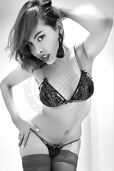 Asia Young VERONA 3895203577
